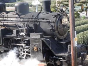 DSCN8395