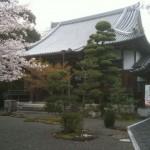 慶全寺の縁日