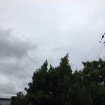 工場にて、、、久々の雨が降ってきました【焼津市 工場】