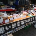 東海道音楽祭~つながりのみち~IN大慶寺【静岡県藤枝市】
