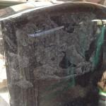 藤枝霊園のお客様の「桜にメジロ」の影彫りの入った石塔に字彫りしました。【静岡県焼津市 工場】