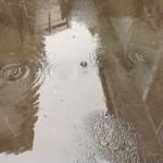 梅雨らしい季節となりました。【焼津市 焼津工場】